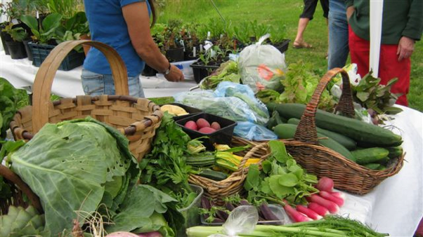 Just a little bit of the delicious produce kindly donated and on sale