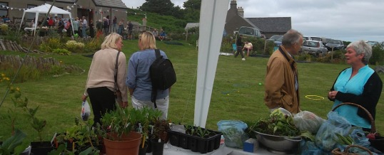 The Community Garden – Planning for 2015