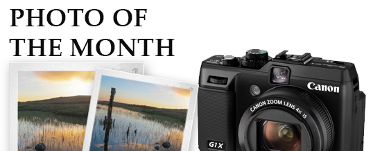 Photograph of the month
